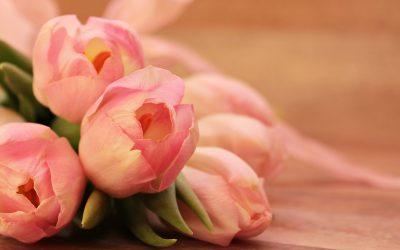 Hoe kies je bloemen voor een uitvaart?